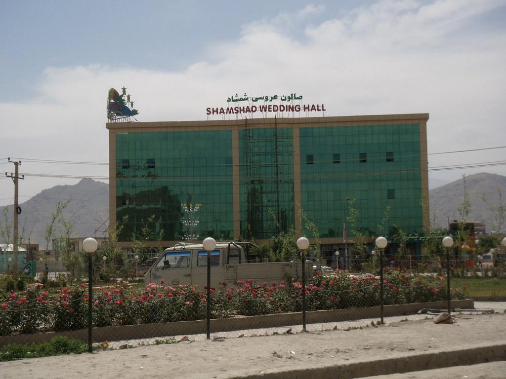 Afghanistan: un lionceau installé sur la terrasse d'un riche 4124009314_e35cb213ae_b