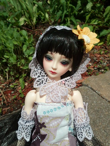 ma première BJD(doll leaves flora) 8998282968_8e810eb8b0