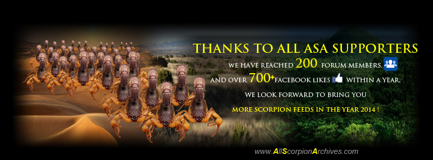 Thank you for your Support and Compliments for ASA! 12317014625_b496a81a9d_o