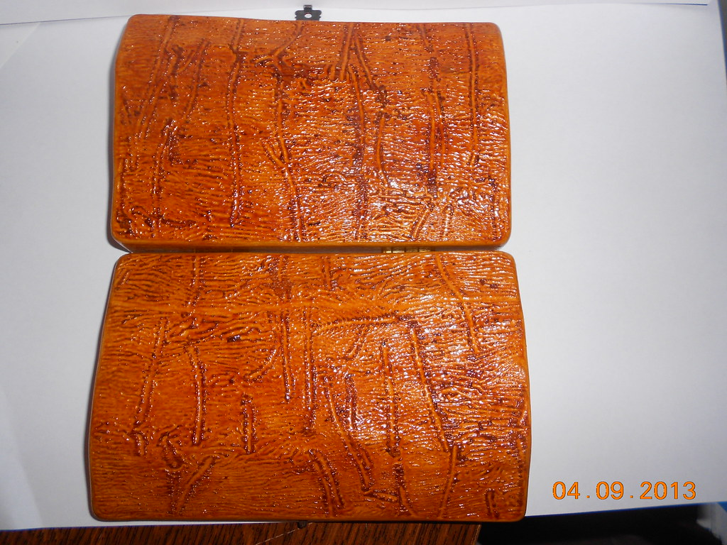 Pepsis rustic Fly Box 9669437195_7f4da7df1c_b