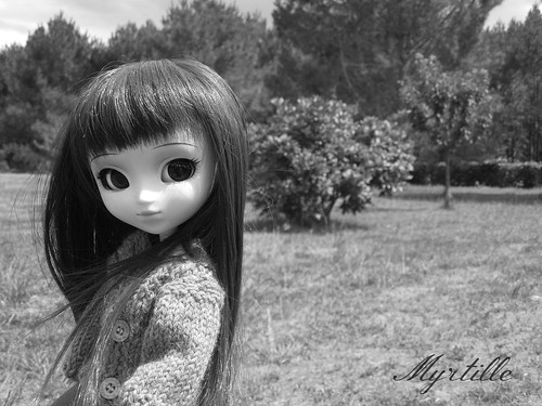 Koizumi's Dollies ; Le retour. 9427015673_7a73c025bb