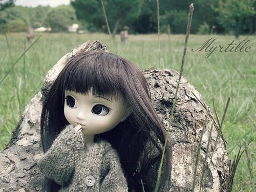 Koizumi's Dollies ; Le retour. 9427015569_4f340aa9c3
