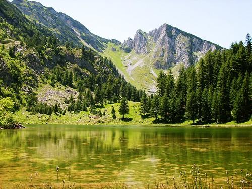 Natyra shqiptare - Faqe 2 2671491826_a0308c9128