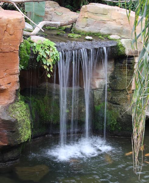 Sortie photo au Parc Paradisio le 05 octobre : Les photos - Page 2 2939747022_93f5b04670_o