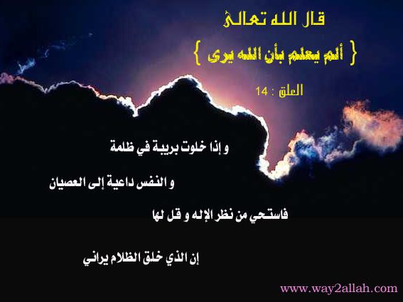 حملة عيـــــنك أمانة  3489726758_9a79828b21_o