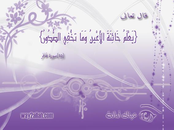 حملة عيـــــنك أمانة  3488907271_6a0aba65eb_o