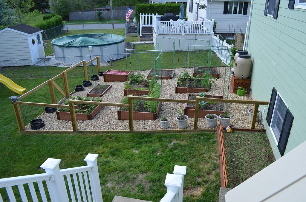 New garden from Dartmouth,MA (pics) 5795041362_a55a3815cc_b