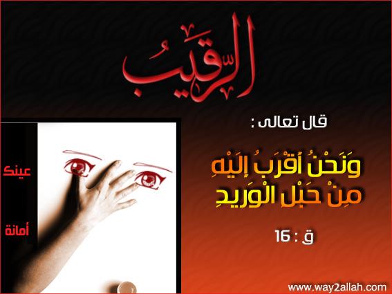 حملة عيـــــنك أمانة  3488930115_e30bfedb91_o