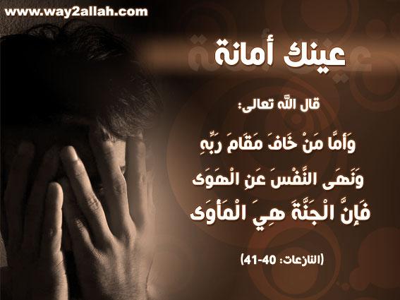 حملة عيـــــنك أمانة  3489773170_0ee18b515b_o