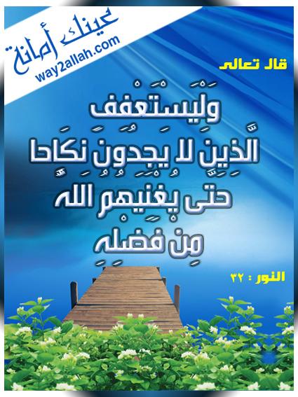 حملة عيـــــنك أمانة  3488939627_31365b6848_o