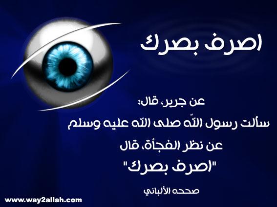 حملة عيـــــنك أمانة  3488944235_90267e0b4c_o
