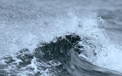 ♫♫ غرق الغرقان أكثــر ♫♫  3395993961_b43f8606fb