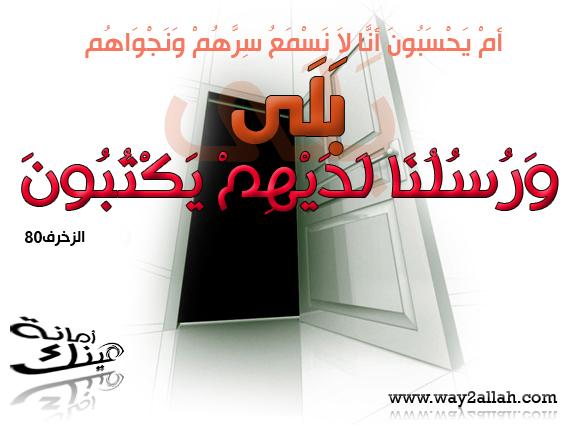 حملة عيـــــنك أمانة  3488956277_344603bb00_o