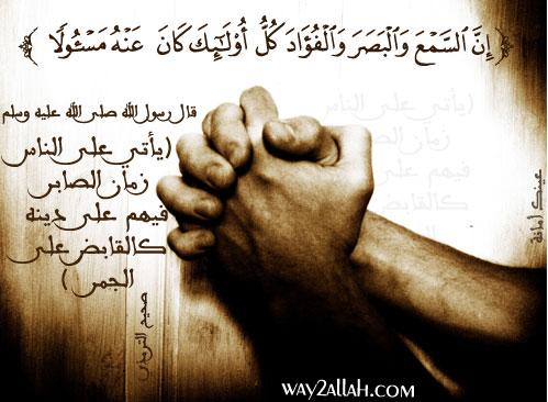 حملة عيـــــنك أمانة  3488941219_14648ff37a_o