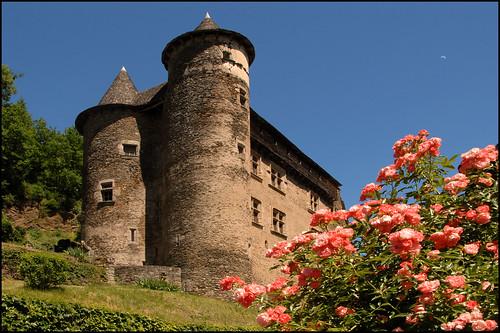 Tour du Cantal 2009 - Page 3 3578080354_0f1e9702c8