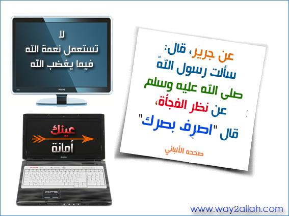 حملة عيـــــنك أمانة  3488902267_538104e5db_o
