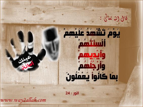 حملة عيـــــنك أمانة  3488937847_591657d9de_o
