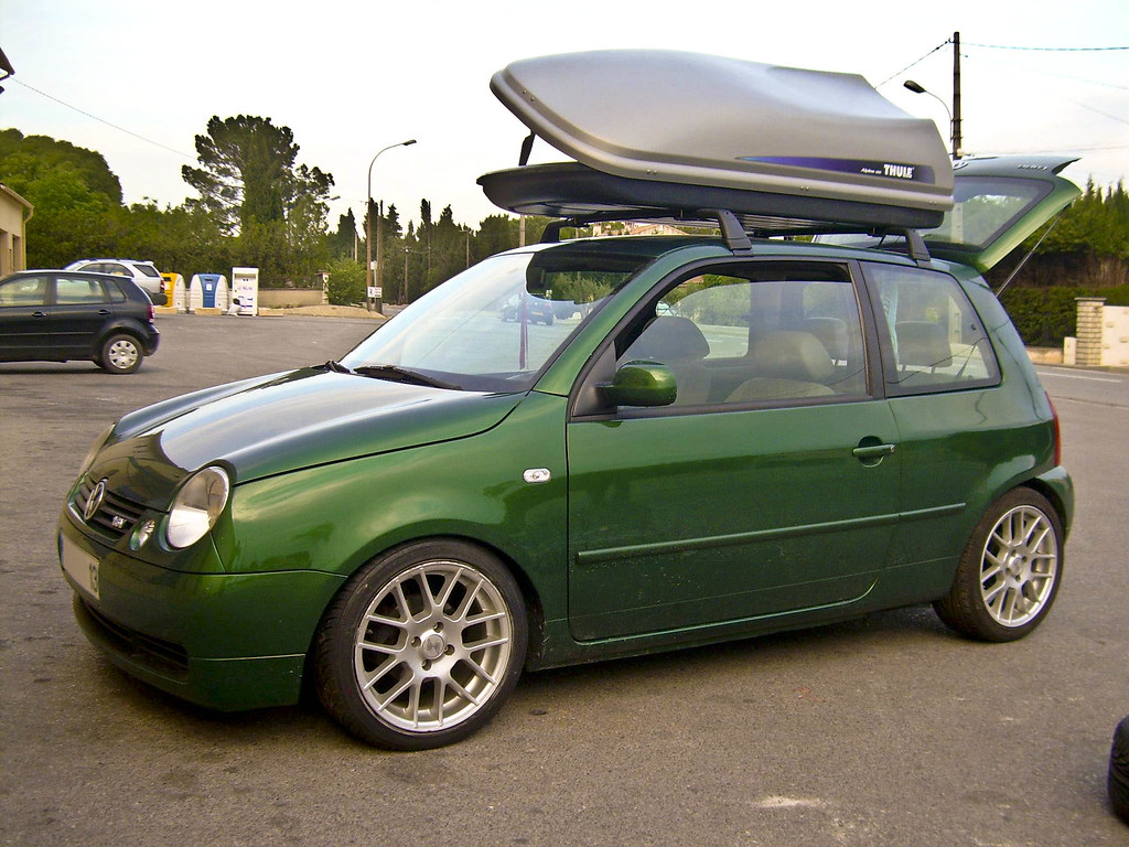 Lupo by MontanaGreen 3065461578_46676f92f7_b