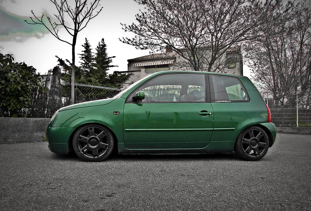 Lupo by MontanaGreen 3402787866_6e41556279_b