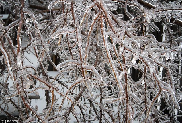 Ice Storm 2013 11502779854_af0d4f879f_z