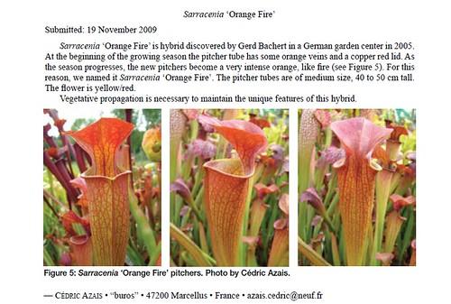 Enregistrement de cultivars NAPP - Page 4 4652640024_d8787c90e9