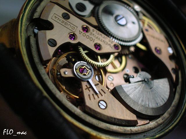 Feu de micro-rotors 4331849145_22805791da_o