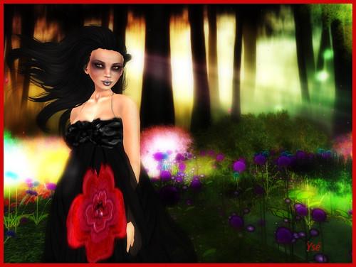 Petite robe - Page 2 4594891876_544a21eb3d