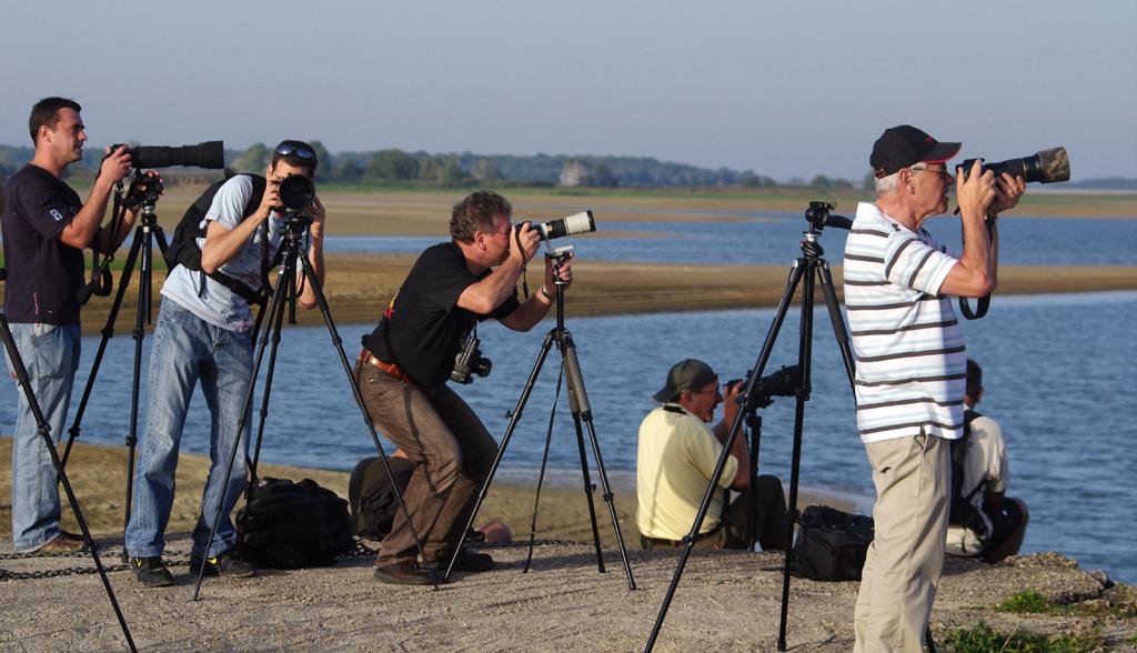 Rencontre Lac du Der 9 et 10 octobre 2010 (Sortie annuelle) - II - Page 6 5083866529_5910e40dbd_o