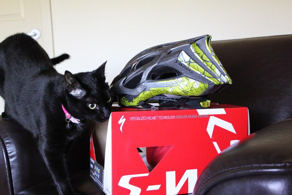 New helmet...woot! 5308663344_bc9a44c5b5_o