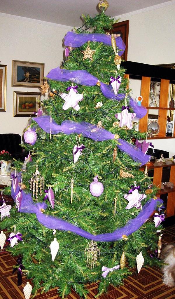 Ecco il mio Xmas Purple Tree!! 5240677542_4239e1b285_b