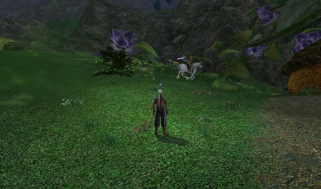 EVERQUEST (MMORG game BLOG) 5338943387_31709a31f4_z