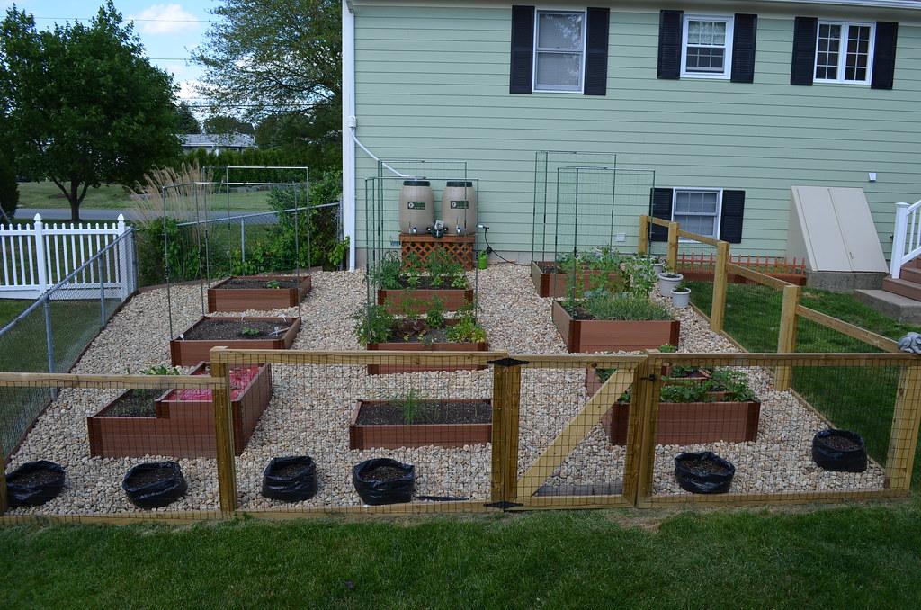 New garden from Dartmouth,MA (pics) 5795020774_28352c3faa_b