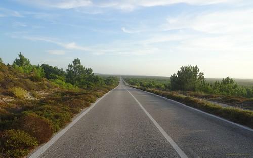 As melhores estradas para conduzir... em Portugal! 22767567928_7039e32189