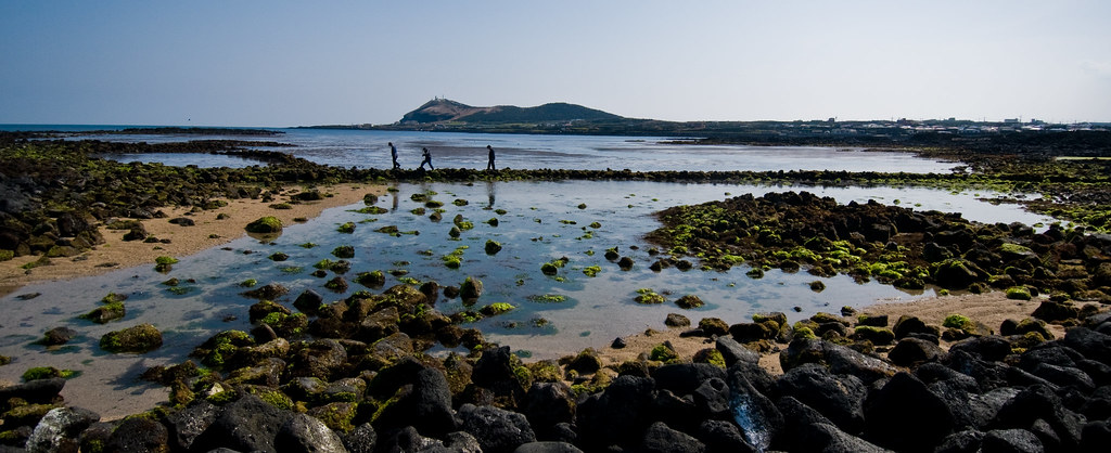 Isla de Jeju, la triple maravilla de la naturaleza 5655650197_51b5abedd5_b