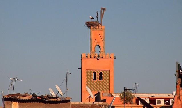 المدن المغربية المحتضنة لكاس العالم للاندية 5504583820_83f6633f89_z