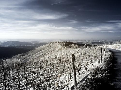 raccontaci la collina - Rivalba 2012 5387110429_b13732cecd