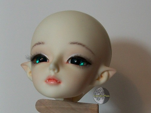 Faceup Pictures 2011 5910739803_d6c8a22164