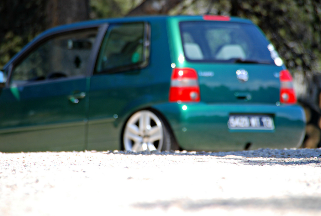 Lupo by MontanaGreen - Page 14 6999302268_cf6b3a6262_b