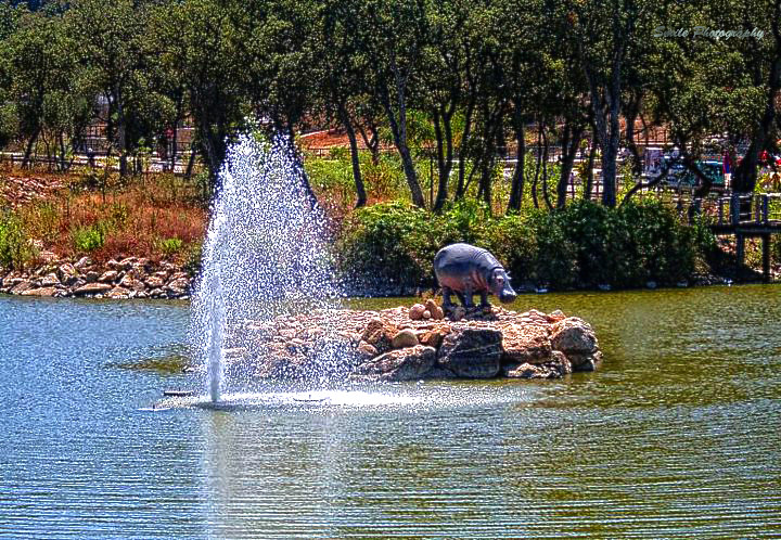 السياحة في جيجل بالصور  12255609626_c04d522117_b