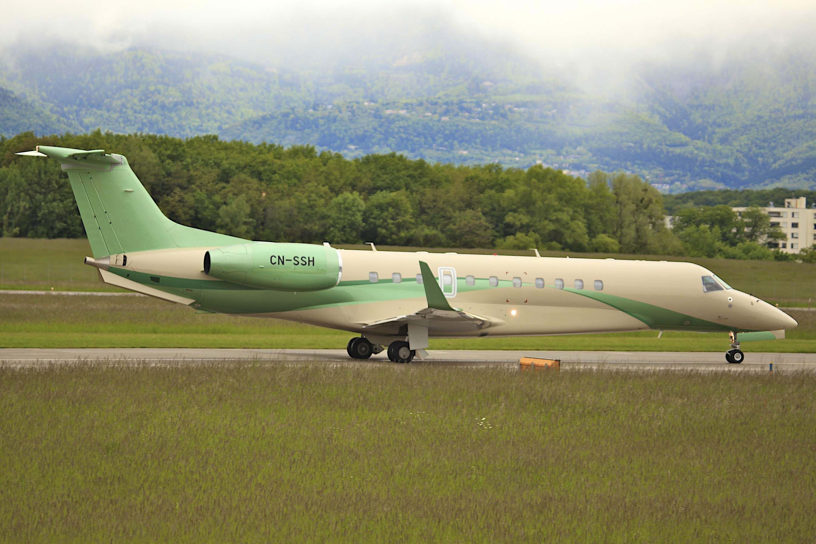 Dalia Air  9514626071_b372ce85d3_o