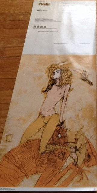 Ashley Wood Prints 11704507324_b3681fc55e_z