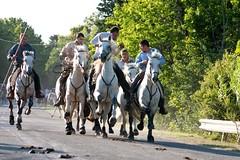 Courses, abrivados, encierros, roussatailles... site fotos 5975052400_6e382e8121_m