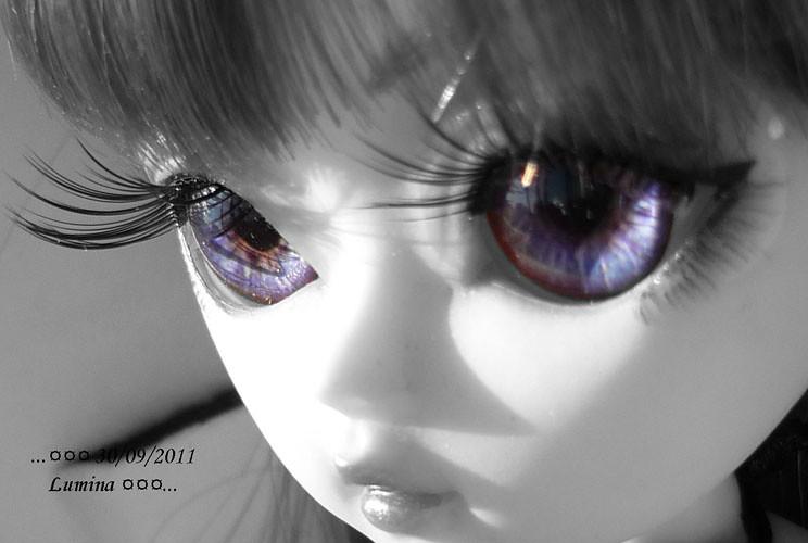 [Famille Hujoo] Le retour !  p2 26/04/2012 6197579189_71b77d940e_b
