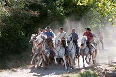 Courses, abrivados, encierros, roussatailles... site fotos 6068495339_a34de130b0_m