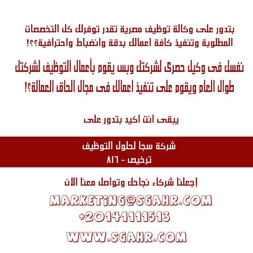 ضع يدك فى خبراء التوظيف فى مصر والشرق الاوسط 6074804379_7eea463776