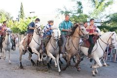 Courses, abrivados, encierros, roussatailles... site fotos 6038828347_0ebc97e803_m