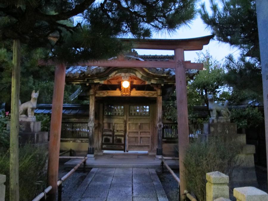 Ellowyne au Japon - Page 2 6188879881_300163961c_o