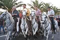 Courses, abrivados, encierros, roussatailles... site fotos 6186392722_26998a8dfb_m