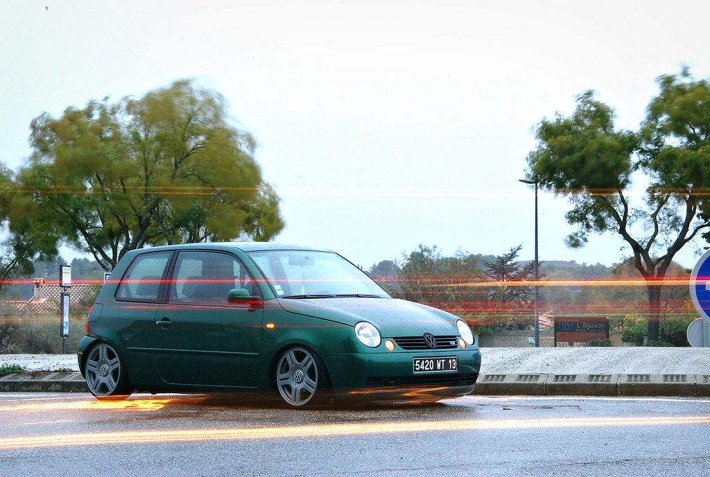 Lupo by MontanaGreen 6309772306_ef3215d5bf_b