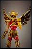 [Imagens] Saint Cloth Myth Seiya de Pégasus V1 Gold Limited 6602107359_2dd109d34c_t